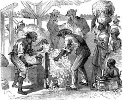 The cotton gin created a 25-fold increase in the amount of cotton that could be processed.