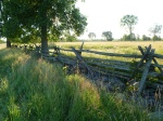 Patten Rail Fences made from cedar cut when the land was first cleared.
