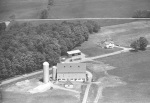 Wilhome Farms, Bloomfield, 1978